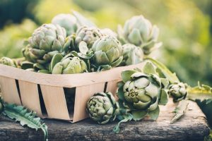 artichoke good for weight loss